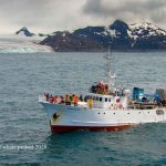 Blog: South Georgia whale expedition in full swing!