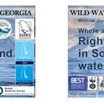 The Wild Water Whales of South Georgia – view science webinar recordings