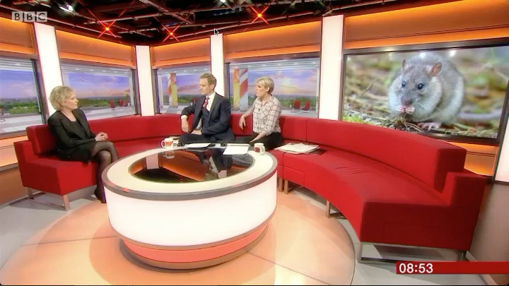 BBC Breakfast: South Georgia declared rodent free