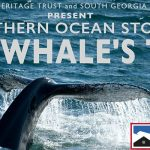 The Whale's Tale: Southern Ocean Stories – view our event recording now on YouTube