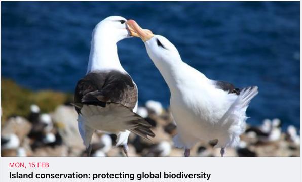 Island conservation: protecting global biodiversity